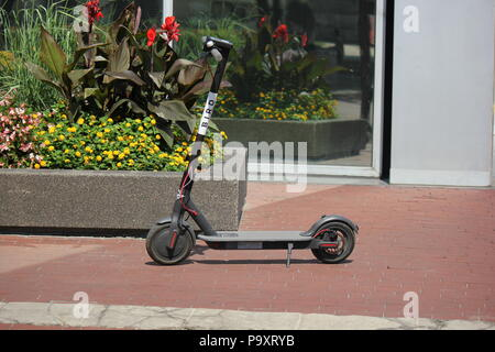 Controversial electric dockless Bird scooter parked in the Monument Circle in Indianapolis, Indiana. - Stock Photo