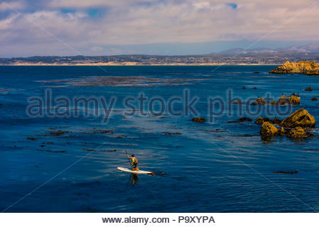A man paddleboarding in Monterey Bay off Pacific Grove, California, USA. - Stock Photo