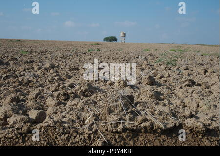 agricultural area, south Israel - Stock Photo