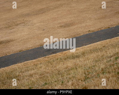 Dry brown grass field in a public park due to extreme hot weather - Stock Photo