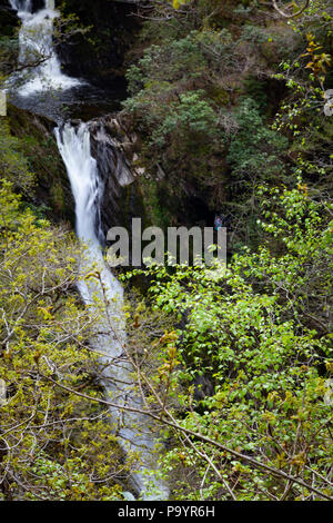 Devil's Bridge Falls – Rhaeadrau Pontarfybach - Ceredigion, Wales, UK - Stock Photo