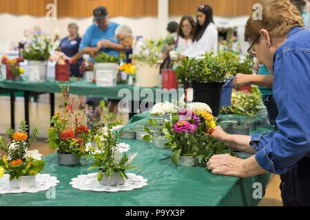 A senior woman working on a flower arrangement, at the Lane County Fair in Eugene, Oregon, USA. - Stock Photo