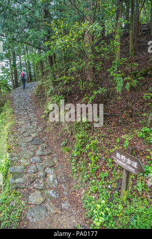 Kumano Kodo pilgrimage route around Takahara village. UNESCO World Heritage Site. Nakahechi. Wakayama. Japan - Stock Photo