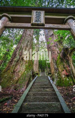 Kumano Kodo pilgrimage route.Tsugizakura Oji. Ancient shrine with centuries old trees. Nakahechi. Wakayama. UNESCO. Japan - Stock Photo
