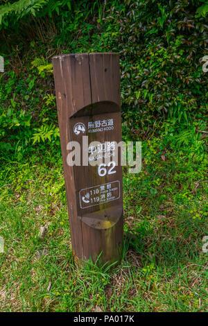 Kumano Kodo pilgrimage route. Way to Mizunomi-oji. Nakahechi. Wakayama Prefecture.  Kii Peninsula. Kansai region. Honshü Island . UNESCO. Japan - Stock Photo