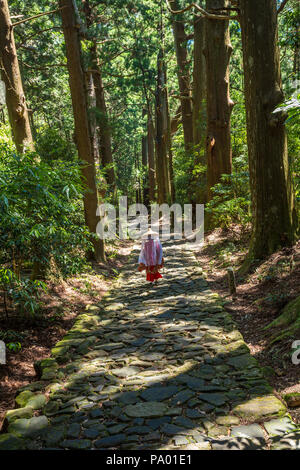 Kumano Kodo pilgrimage route. Daimon-zaka slope. Centenary Japanese cedar. Wakayama Prefecture. Kansai region.  UNESCO. Japan - Stock Photo