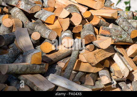 Stack of split firewood in autumn in the maple forest of