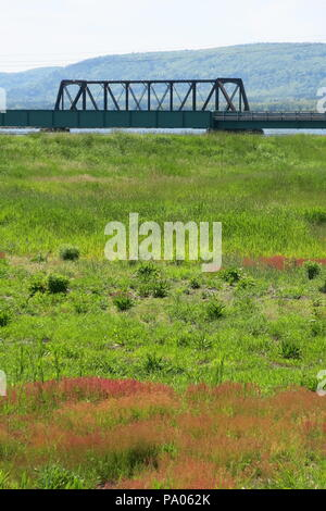 A view across the salt marshes towards the former box girder  rail bridge adjacent to Prince Albert Road, Highway One; Annapolis Royal, Nova Scotia - Stock Photo