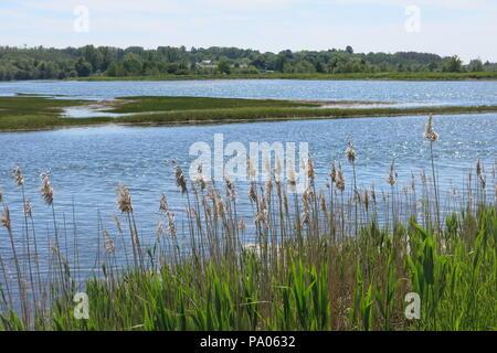 A stroll along the dyke walk gives beautiful views of the grass habitat and salt marshes; the Historic Gardens at Annapolis Royal, Nova Scotia - Stock Photo