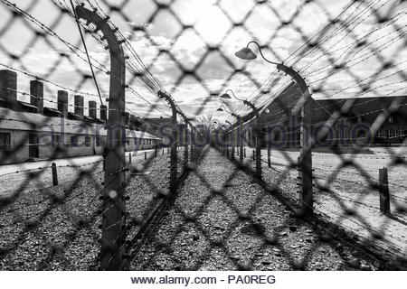 Barbed wire lines a corridor behind a chain link fence at the Auschwitz concentration camp in Oswiecim, Malopolskie Province, Poland - Stock Photo
