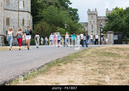 Windsor, UK. 20th July, 2018. Yellowed grass alongside the Long Walk in front of Windsor Castle following the UK's longest heatwave for more than forty years. The grass around Windsor Castle was a lush green at the time of the wedding of the Duke and Duchess of Sussex in May. Credit: Mark Kerrison/Alamy Live News - Stock Photo