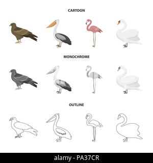 kite pelican flamingo swan birds set collection icons in cartoon