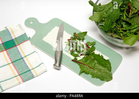 Mixed leaves salad. Step by step. Prepared dish: BJTPHH - Stock Photo