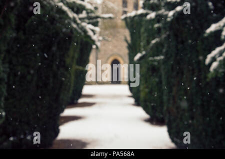 An avenue of yew trees in a churchyard with snow falling, with the door of the church artistically out of focus in the background - Stock Photo