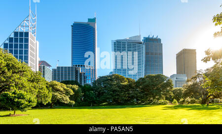 Public grass area in Royal Botanic Gardens, Sydney - Stock Photo