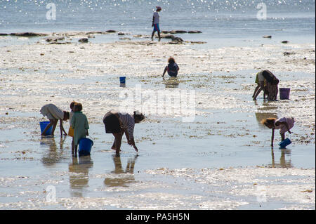 ANTANANARIVO, MADAGASCAR - JULY 3, 2011: Unidentified Madagascar adults and children get water.  People in Madagascar suffer of poverty due to slow de - Stock Photo