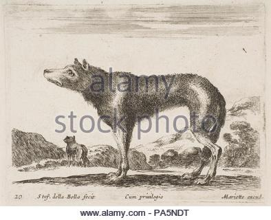 Plate 20: wolf, from 'Various animals' (Diversi animali), ca. 1641, Etching; second state of three (De Vesme), Plate: 3 3/8 × 4 3/8 in. (8.5 × 11.1 cm), Prints, Stefano della Bella (Italian, Florence 1610–1664 Florence). - Stock Photo
