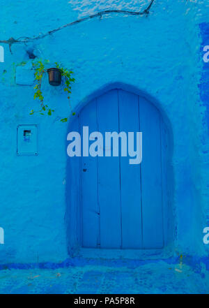 Blue front door, house facade, blue painted house, medina of Chefchaouen, Chaouen, Tanger-Tétouan, Kingdom of Morocco - Stock Photo