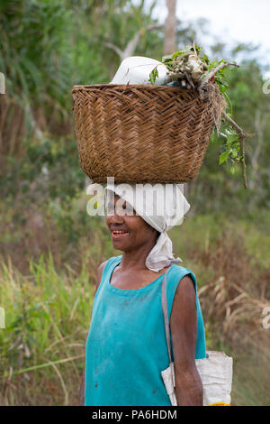 Woman carries supplies, Sepik River, Papua New Guinea - Stock Photo
