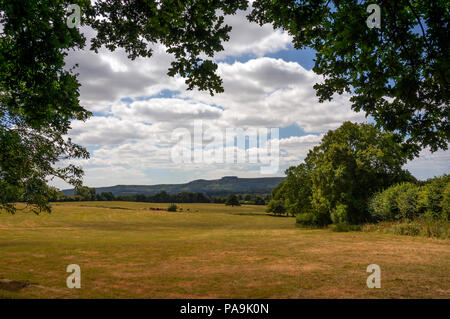 View from the Weald to Chanctonbury Ring in the South Downs National Park, West Sussex, UK - Stock Photo