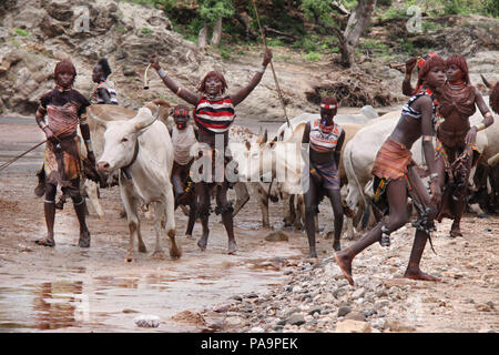 Group of Hamer women during Bull Jumping ceremony (Ukuli ritual) by Hamer Hamar tribe, Ethiopia - Stock Photo