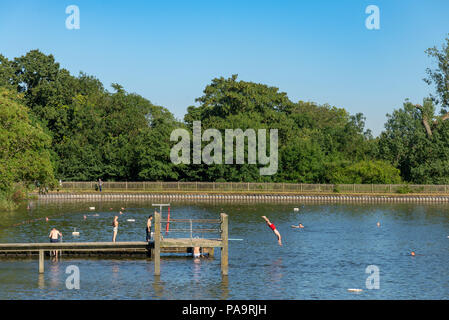 Hampstead Heath men's pond, London, UK - Stock Photo