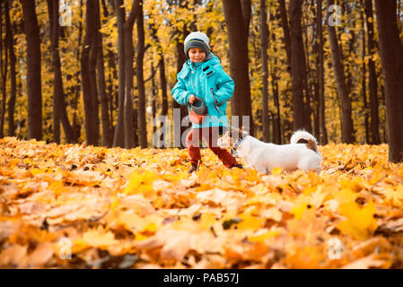 Kid boy walking and playing with dog on leash at outdoor autumn park - Stock Photo