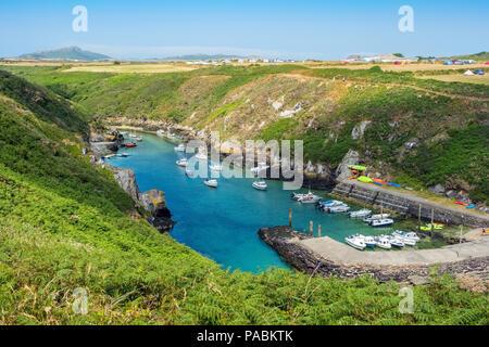 Porth Clais near St Davids in the Pembrokeshire Coast National Park, Wales,UK - Stock Photo