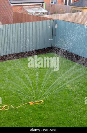 Sprinkler attached to a yellow hose being used to water a newly laid grass lawn on a new housing development - Stock Photo