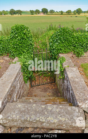 Hidden Steps leading from the Graveyard at Kinnell Church to an old path no longer used within the surrounding Farmland, Angus, Scotland. - Stock Photo