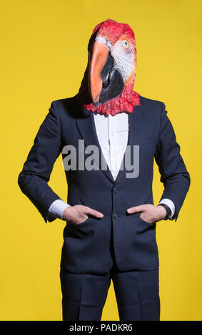 A man in a suit and a parrot mask. Conceptual business background - Stock Photo
