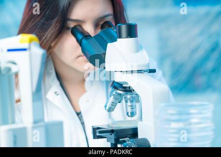 Young woman technician in a scientific laboratory with microscope slide - Stock Photo