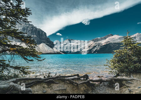 View over Bow Lake, Banff National Park Canada - Stock Photo