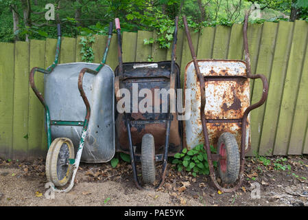 Three (3) rusty old wheelbarrows leaning against a weathered wooden garden fence with greenery in the background - Stock Photo