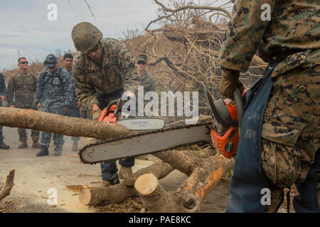 170925-M-IZ659-0017 ST. CROIX, U.S. Virgin Islands (Sept. 24, 2017) U.S. Marines assigned to Combat Logistics Battalion 26, 26th Marine Expeditionary Unit (26th MEU), cut branches from a fallen tree to clear a road in St. Croix, U.S. Virgin Islands, Sept. 25, 2017. The 26th MEU is supporting the Federal Emergency Management Agency, the lead federal agency, and local authorities in Puerto Rico and the U.S. Virgin Islands with the combined goal of protecting the lives and safety of those in affected areas. - Stock Photo