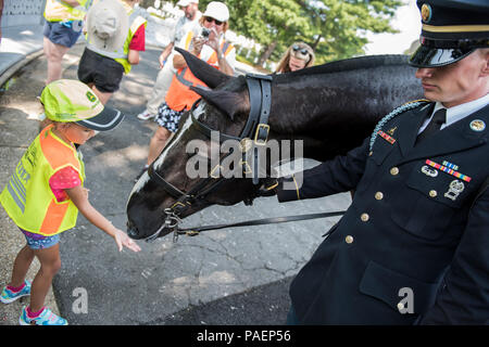 Koryn Murphey, a Children's Program volunteer from the National Association of Landscape Professional (NALP), feeds peppermints to Luke, a horse from The 3d U.S. Infantry Regiment (The Old Guard) Caisson Platoon, near Section 46 of Arlington National Cemetery, Arlington, Virginia, July 16, 2018. Over 400 volunteer landscape professionals participated in the NALP's 22nd annual Renewal and Remembrance event at Arlington National Cemetery. Volunteers aerated turf, planted flowers, laid irrigation pipes, and installed lighting protection on several trees. (U.S. Army photo by Elizabeth Fraser / Arl - Stock Photo