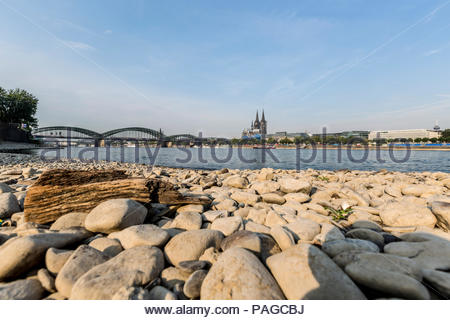 Due to persistent high temperatures and lack of precipitation, the water level of the river Rhine in Cologne, Germany is lower than usual in the summe - Stock Photo