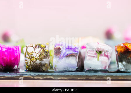 Frozen Spring Flowers in Ice Cubes on Dark Background - Stock Photo