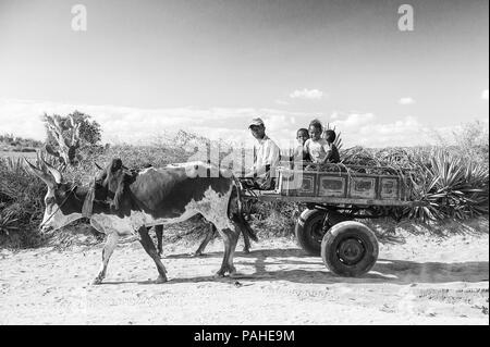 ANTANANARIVO, MADAGASCAR - JULY 3, 2011: Unidentified Madagascar man rides the cow carriage with his children. People in Madagascar suffer of poverty  - Stock Photo