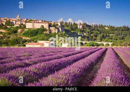 Sault, hilltop village in Provence with lavender fields, Vaucluse in France. - Stock Photo