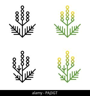 Ragweed minimalistic line art painted in two styles - Stock Photo