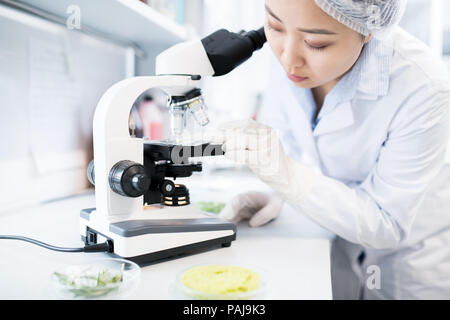 Side view portrait of Asian female scientist using microscope while doing research in medical laboratory - Stock Photo