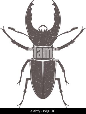 Vintage brown deer beetle emblem. Grunge badge, typogrphic symbol suitable for T-shirts or print. Isolated vector illustration - Stock Photo
