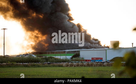 Rostock, Germany. 24th July, 2018. Thick clouds of smoke rise from a recycling yard during a fire. According to a police spokeswoman, initially, there were no casualties. Credit: Frank Hormann/dpa/Alamy Live News - Stock Photo