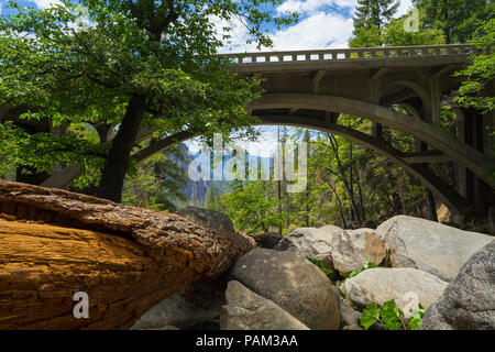 Dead tree and forest boulders under an arch bridge over Cascade Creek - Yosemite National Park - Stock Photo