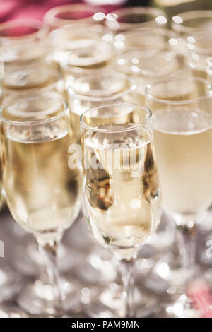 A lot of champagne glasses close up on wedding reception - Stock Photo