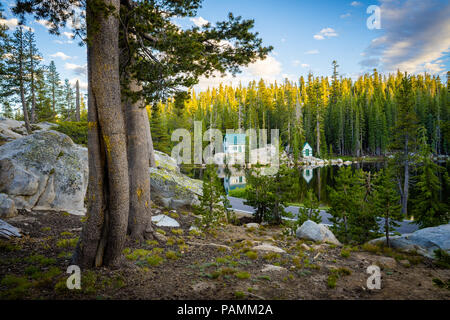 Campsite view at Mosquito Lakes National Forest Cabins and Campground - Pacific Grade Summit on Highway 4, California - Stock Photo