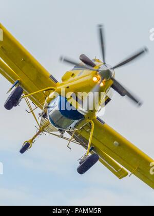Croatian Yellow water bomber - Stock Photo