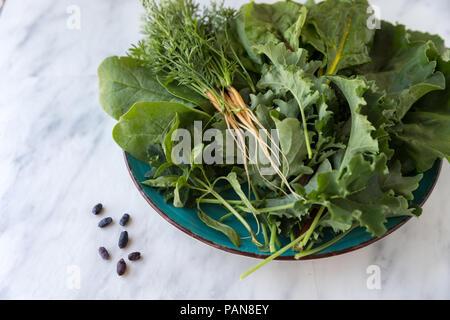 fresh carrots, kale, lettuce, chard, and honey berries on plate - Stock Photo