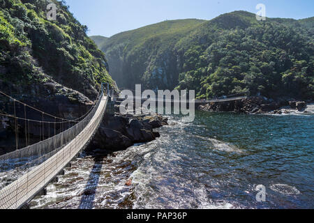 Africa, South Africa, East Cape, Tsitsikamma National Park, Storms River Mouth, suspension bridge
